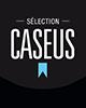 Pastille_Caseus_Argent_2013